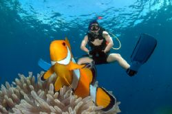 Yuhu..ride a nemo by Iman Brotoseno 